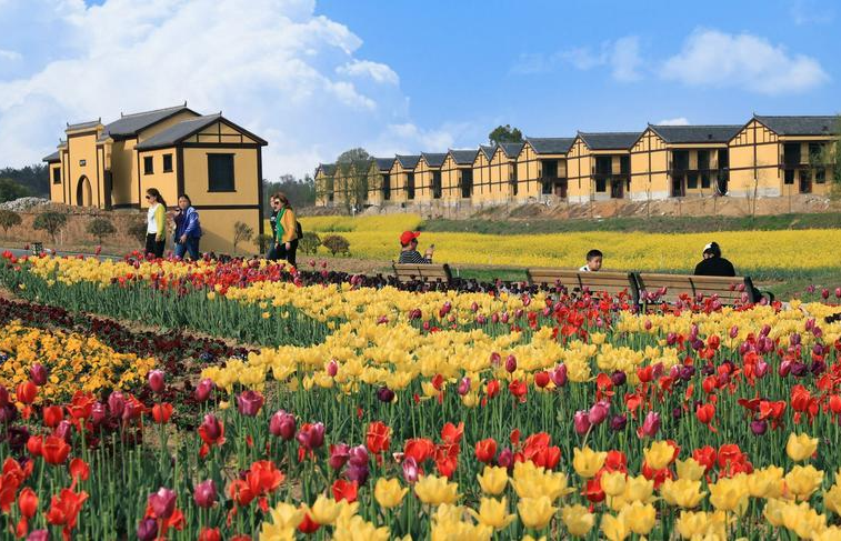 农业农村部办公厅 中国农业银行办公室关于加强金融支持乡村休闲旅游业发展的通知